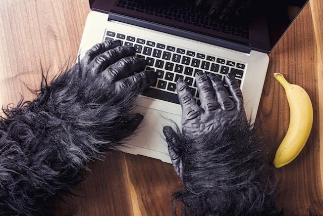 ordinateur
